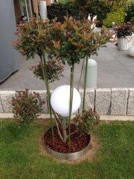 Beetumrandung PR600 Pflanzenring Beeteinfassung...