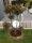 Beetumrandung PR800 Pflanzenring Beeteinfassung Rasenkanten Edelstahl V2A 800mm